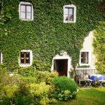 Comment et pourquoi faire appel à un paysagiste pour votre maison ?